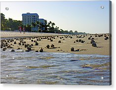 Acrylic Print featuring the photograph Fighting Conchs At Lowdermilk Park Beach In Naples, Fl by Robb Stan
