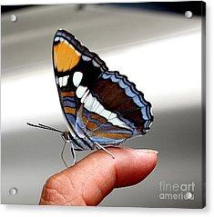 Finger Blessing Acrylic Print