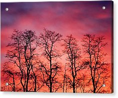 Fire In The Sky Acrylic Print by Todd Klassy