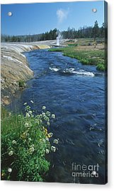 Firehole River Acrylic Print by Stan and Anne Foster