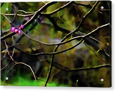 First Sign Of Spring Acrylic Print by Gerlinde Keating - Galleria GK Keating Associates Inc
