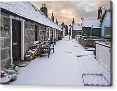 Fittie In The Snow Acrylic Print