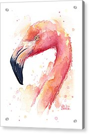 Flamingo Watercolor Acrylic Print