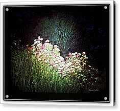 Flowers At Night Acrylic Print