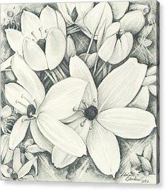 Flowers Pencil Acrylic Print