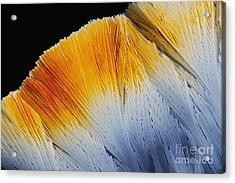 Fluoxetine Hydrochloride, Polarized Lm Acrylic Print