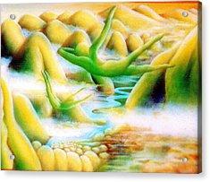 Flying Dream 1 Acrylic Print by Barbara Stirrup