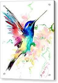 Flying Hummingbird Acrylic Print