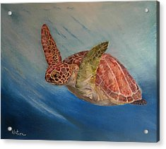 Flying Underwater Acrylic Print by Ceci Watson