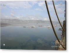 Foggy Morning At Cape Porpoise Acrylic Print by David Bishop