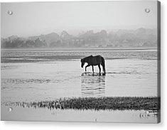 Foggy Morning Crossing Acrylic Print