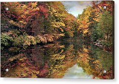 Acrylic Print featuring the photograph Foliage Reflections by Jessica Jenney