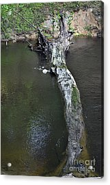 Acrylic Print featuring the photograph Footbridge by Skip Willits