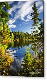Forest And Sky Reflecting In Lake Acrylic Print by Elena Elisseeva