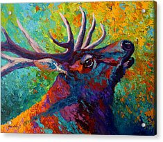 Forest Echo - Bull Elk Acrylic Print by Marion Rose