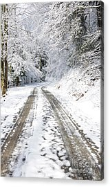 Forest Service Road 76 Acrylic Print by Thomas R Fletcher
