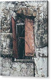 Acrylic Print featuring the photograph Forgotten Homestead by Kim Hojnacki