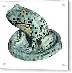 Frog Acrylic Print by Katia Weyher