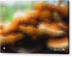 Fungus Tendrils Acrylic Print by Ron Bissett