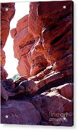 Garden Of The Gods, Colorado Springs, Red Rocks Sun Rising Acrylic Print by Adam Long