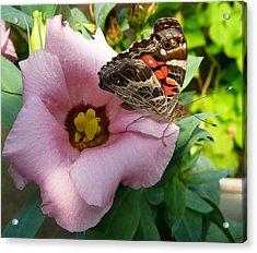 Garden Visitor Acrylic Print