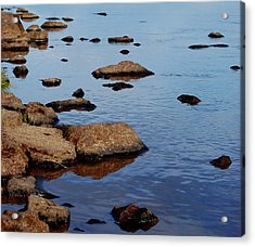 Acrylic Print featuring the photograph Gathering Wisdom by Marilynne Bull