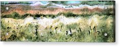 Geese In Grass Acrylic Print