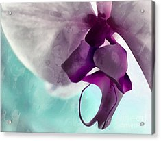 Gentle Beginnings Acrylic Print
