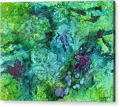 Gilkey Creek Autumn Acrylic Print by James Douglas Draper