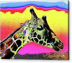Giraffe Fun Acrylic Print