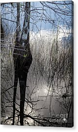 Glades 4 Acrylic Print by Richard Smukler