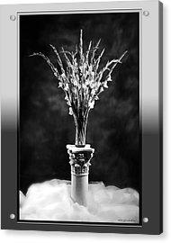 Gladiolas Acrylic Print by Linda Olsen