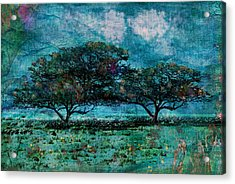 Glory Of Africa Acrylic Print