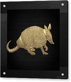 Gold Armadillo On Black Canvas Acrylic Print by Serge Averbukh