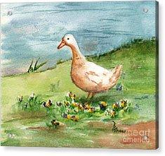 Golden Goose Acrylic Print by Brenda Thour