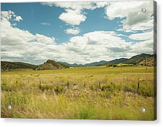 Golden Meadows Acrylic Print