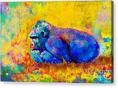 Gorilla Gorilla Acrylic Print
