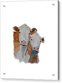 Got Hay? Acrylic Print by Gary Thomas