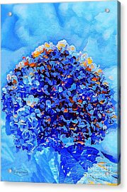 Got The Blues Acrylic Print