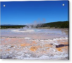 Great Fountain Geyser In Yellowstone National Park Acrylic Print by Louise Heusinkveld