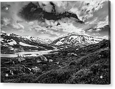 Acrylic Print featuring the photograph Green Carpet Under The Cotton Sky by Dmytro Korol