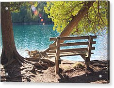 Green Lakes Acrylic Print by David Stasiak