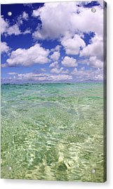 Green Water Seascape Acrylic Print by Vince Cavataio