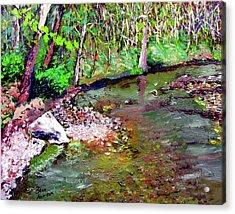 Greesy Creek Acrylic Print by Stan Hamilton
