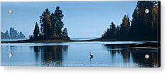 Hanging Out At Sunnyside Acrylic Print by Marie-Dominique Verdier