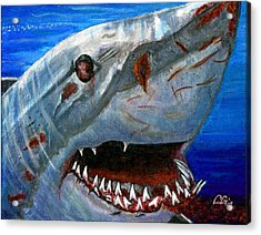 Happy Shark Acrylic Print by BlondeRoots Productions