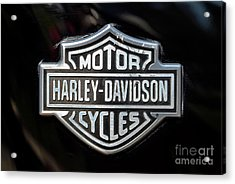 Harley-davidson Badge Acrylic Print