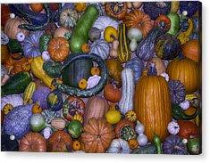 Harvest Abundance  Acrylic Print