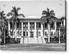 University Of Hawaii Hawaii Hall Acrylic Print by University Icons