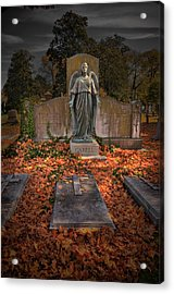 Acrylic Print featuring the photograph Heaven's Gate by Williams-Cairns Photography LLC